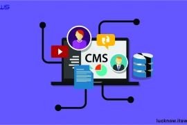 CMS Based E-commerce Website in Lucknow
